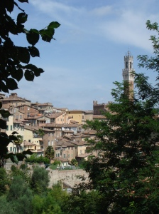 ToscanaUno 261